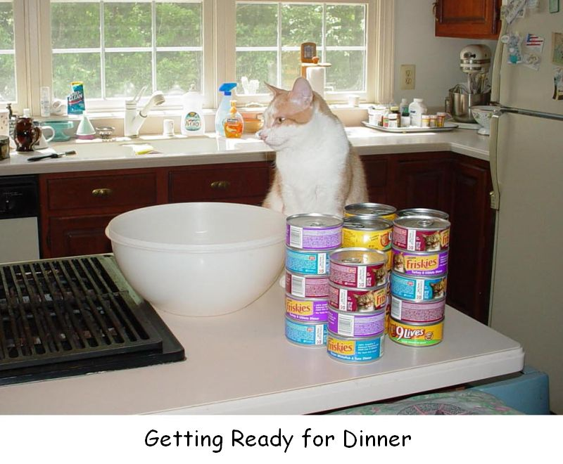 Getting Ready for Dinner